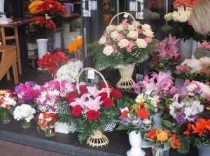 fiori1